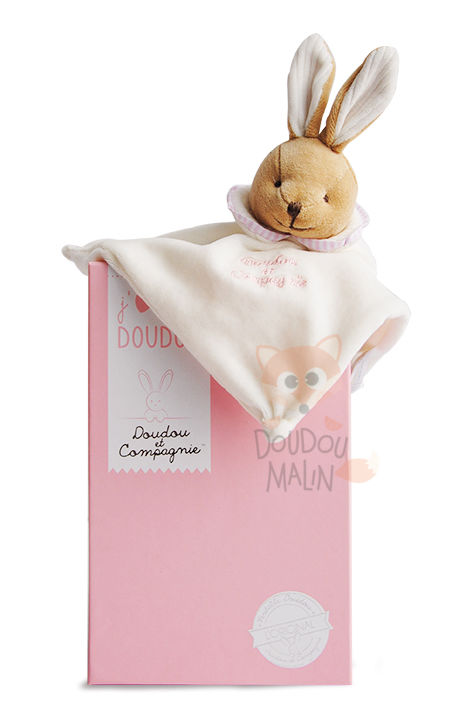 loriginal lapin plat carré rose blanc